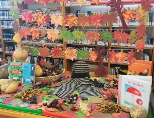 La Biblioteca Municipal de Móra la Nova guanya un concurs de foment de la lectura per segona vegada